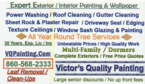 Click to see Victor Quality Painting Details